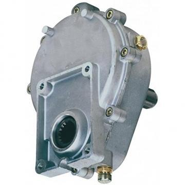 Hydraulikpumpe Ölpumpe Kraftstoffpumpe Schmierstoffpumpe Pumpe 780W 230V Zahnrad