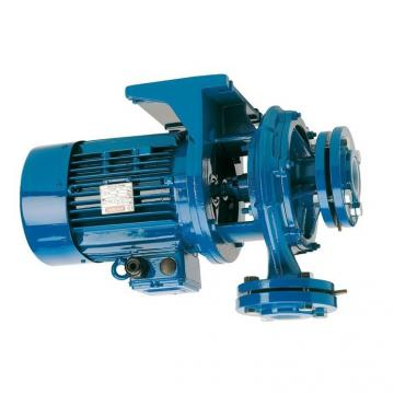 Pompa idraulica elettrica + valvola manuale 700 Bar 750 W