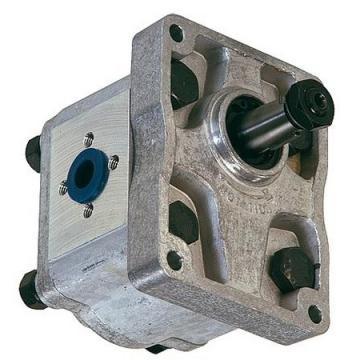 Fiat Trattore Pompa Idraulica Volume 8 Ccm / OEM Nr 5179724, C18X