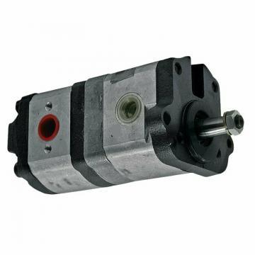 OMCN GP10/DE Gru idraulica pompa doppio effetto 1 ton.