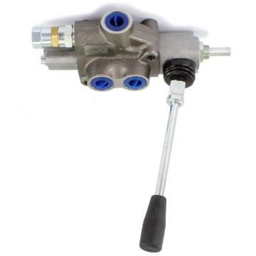 Pompa Idraulica Elettrica Electric Driven 750W Valvola Solenoide Doppio Effetto