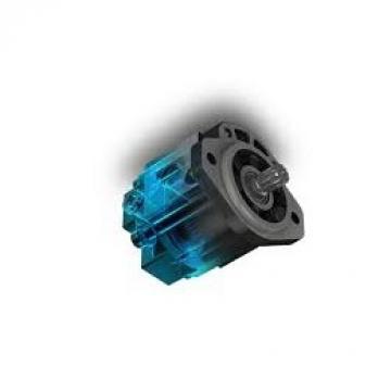 (Rexroth) Hydromatik Gmbh Ulm A6V-20-EL-2-GP-1-0000-S0 Pompa Idraulica