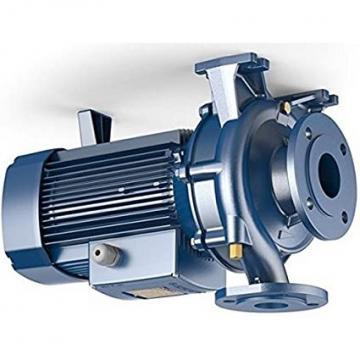 Pompa centrifuga flangiata NSCE40-200/55 7,5Hp Elettropompa con flange Lowara