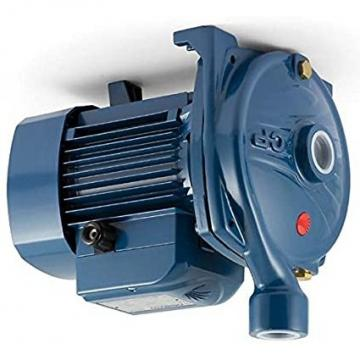 Lowara eHM Pompa Centrifuga Multistadio 5HM02P04T 0,62kW 0,83Hp 3x230/400 50Hz