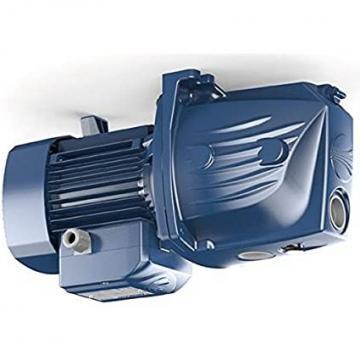 Lowara eHM Pompa Centrifuga Multistadio 3HM03P04T 0,58kW 0,78Hp 3x230/400 50Hz