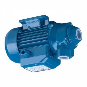 Pompa centrifuga flangiata NSCE50-160/92 12,5Hp Elettropompa con flange Lowara
