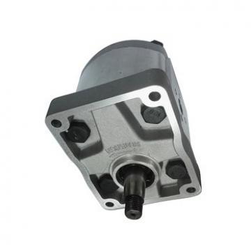 POMPA IDRAULICA si adatta FIAT F110 F115 F120 F130 F140 M100 M115 M135 M160 trattori.