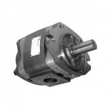 8L 12V Volt Pompa Idraulica Gruppo Oleodinamica Doppio Effetto Metallo Riparare